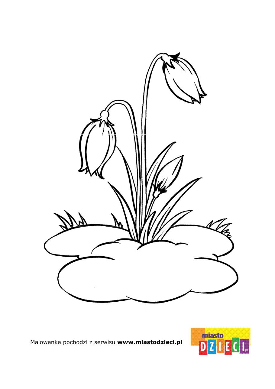 Symbol Wiosny Przebisnieg Na Kolorowance Do Wydrukowania Wsrod Naszych Darmowych Kolorowanek Znajdziesz Mnostwo In 2020 Flower Drawing Flower Sketches Cute Drawings