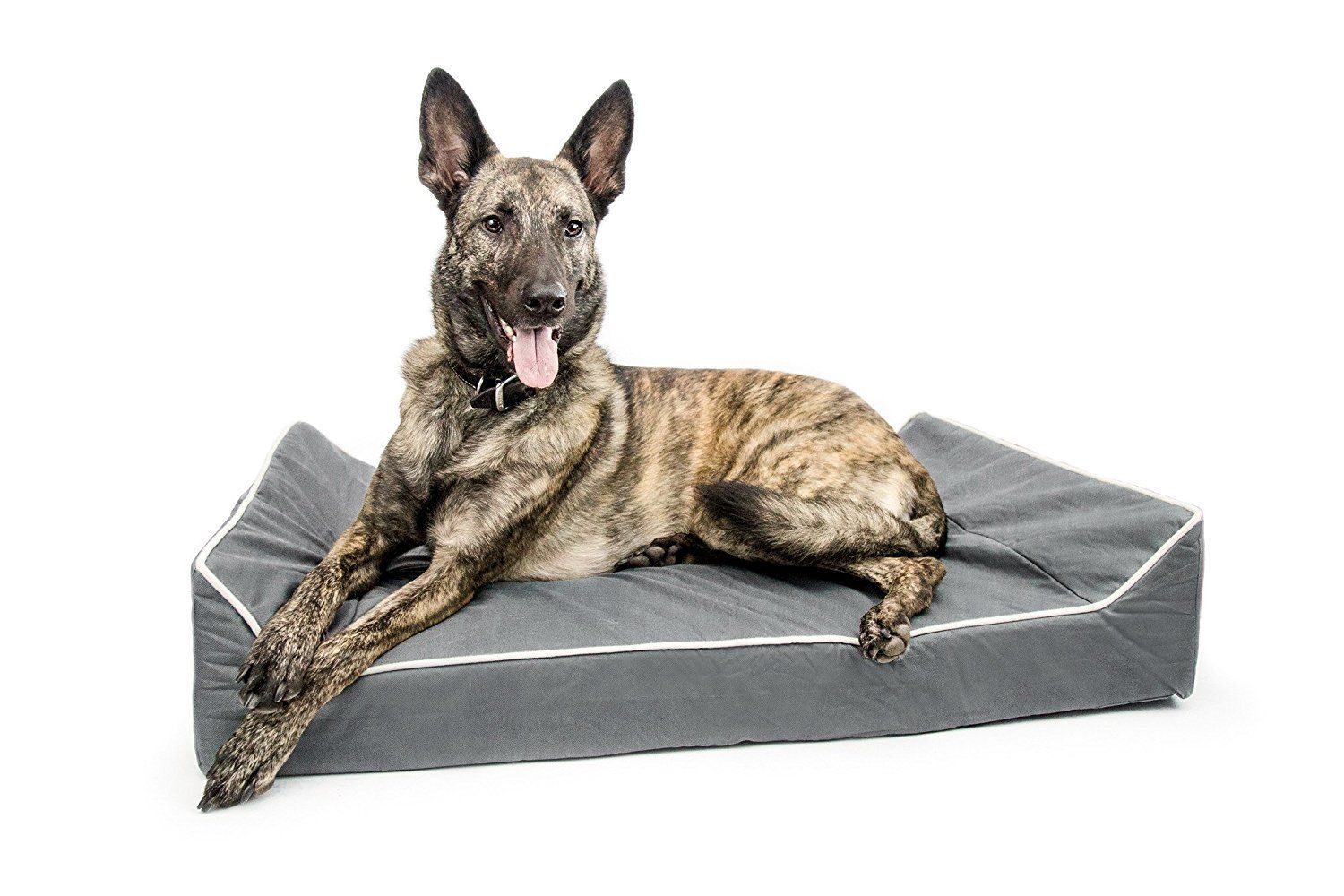 Titan Dog Bed Chew Resistant, Memory Foam, Washable Cover