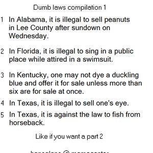 stupid laws - Google Search