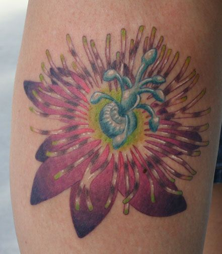Flower Tattoo With Names: Image Detail For -Passion Flower Husbands Name Kip Is