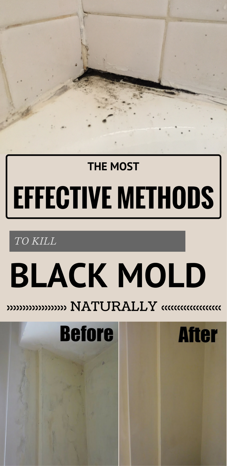The Most Effective Methods To Kill Black Mold Naturally Mold In - Natural mold remover for bathroom