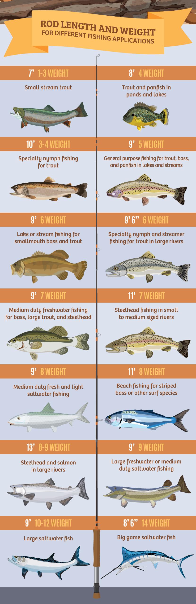 Pin On Fishing Stuff
