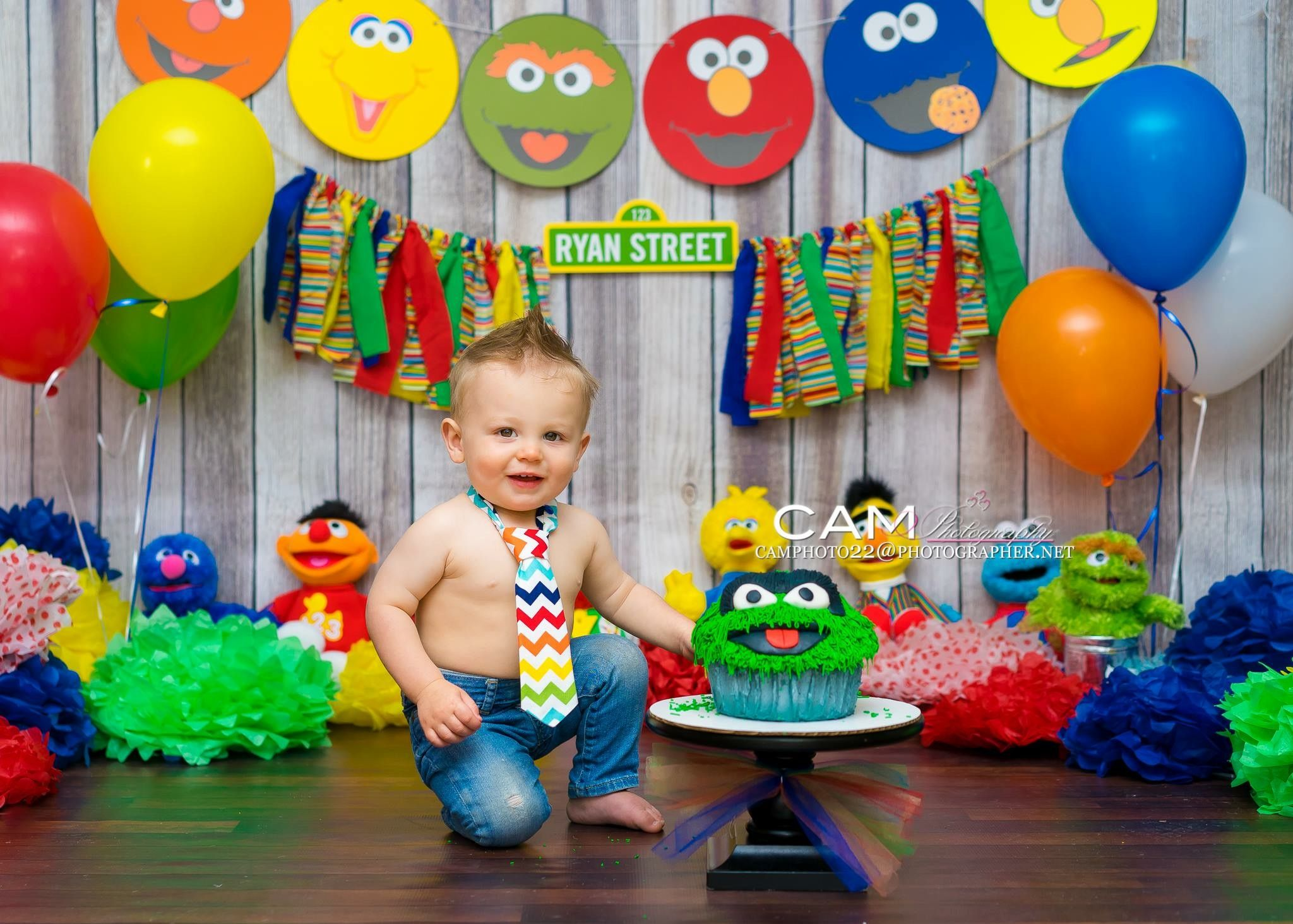 first birthday invitation template india%0A My Son u    s  st Birthday Pictures  Sesame Street Theme        Austin u    s  st Bday     Pinterest   Birthday pictures  Sesame streets and Birthdays