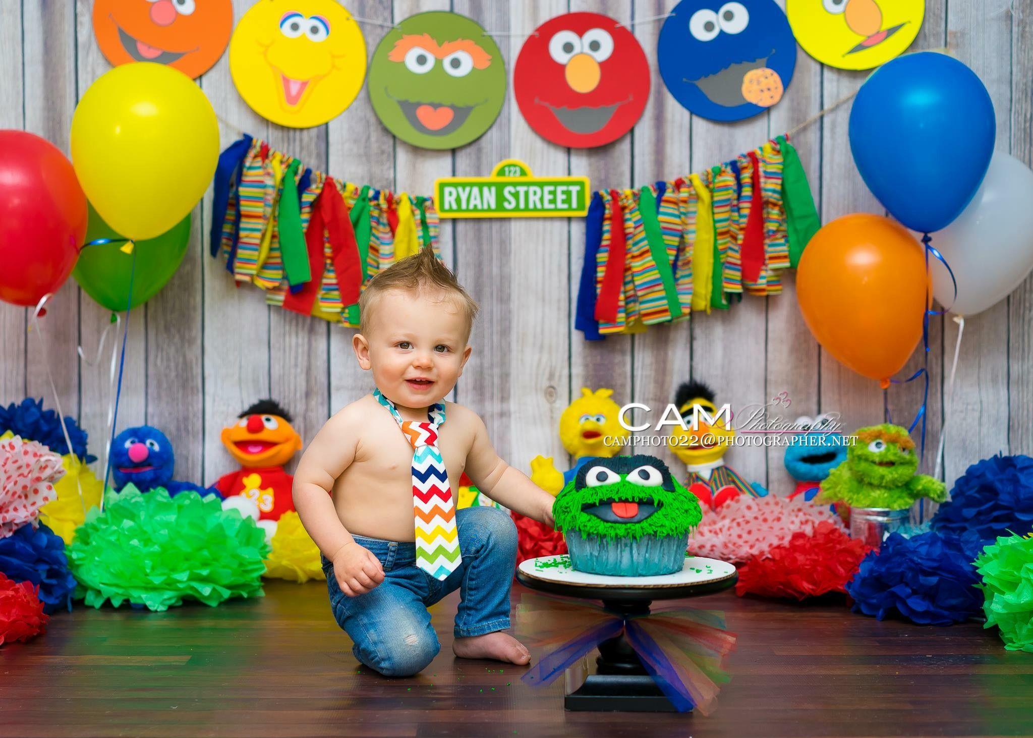 Fabulous Sesame Street First Birthday Cake Smash Photo Theme Interior Design Ideas Tzicisoteloinfo