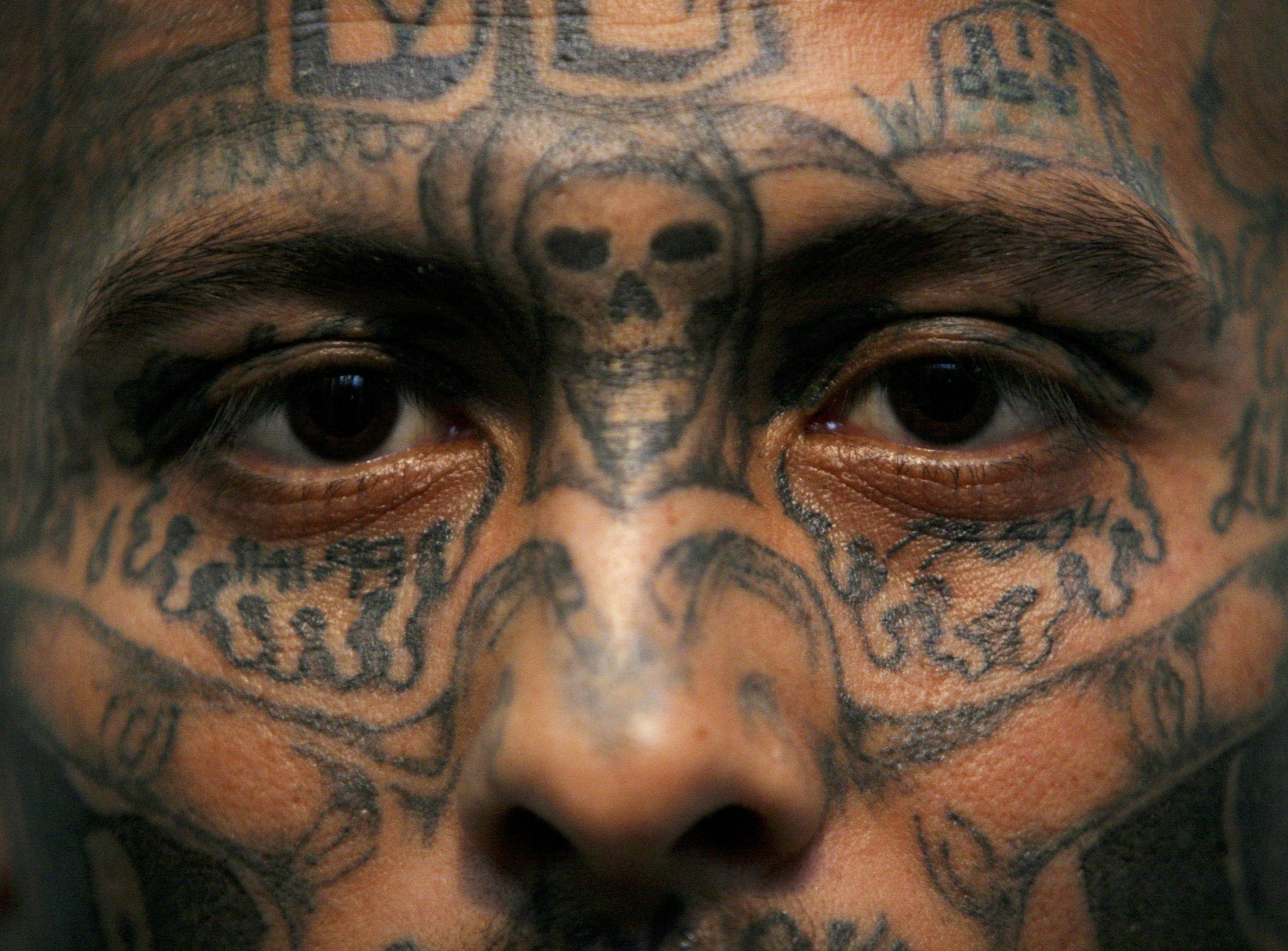 Trump says hes going to destroy ms 13 heres how the gang got trump says hes going to destroy ms 13 heres how the gang got its sinister name buycottarizona