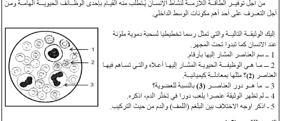 اختبار الفصل الاول في مادة العلوم الطبيعية والحياة للسنة الرابعة متوسط النمودج السابع 2017 2018 منتديات التعليم نت Math Arabic Calligraphy Calligraphy