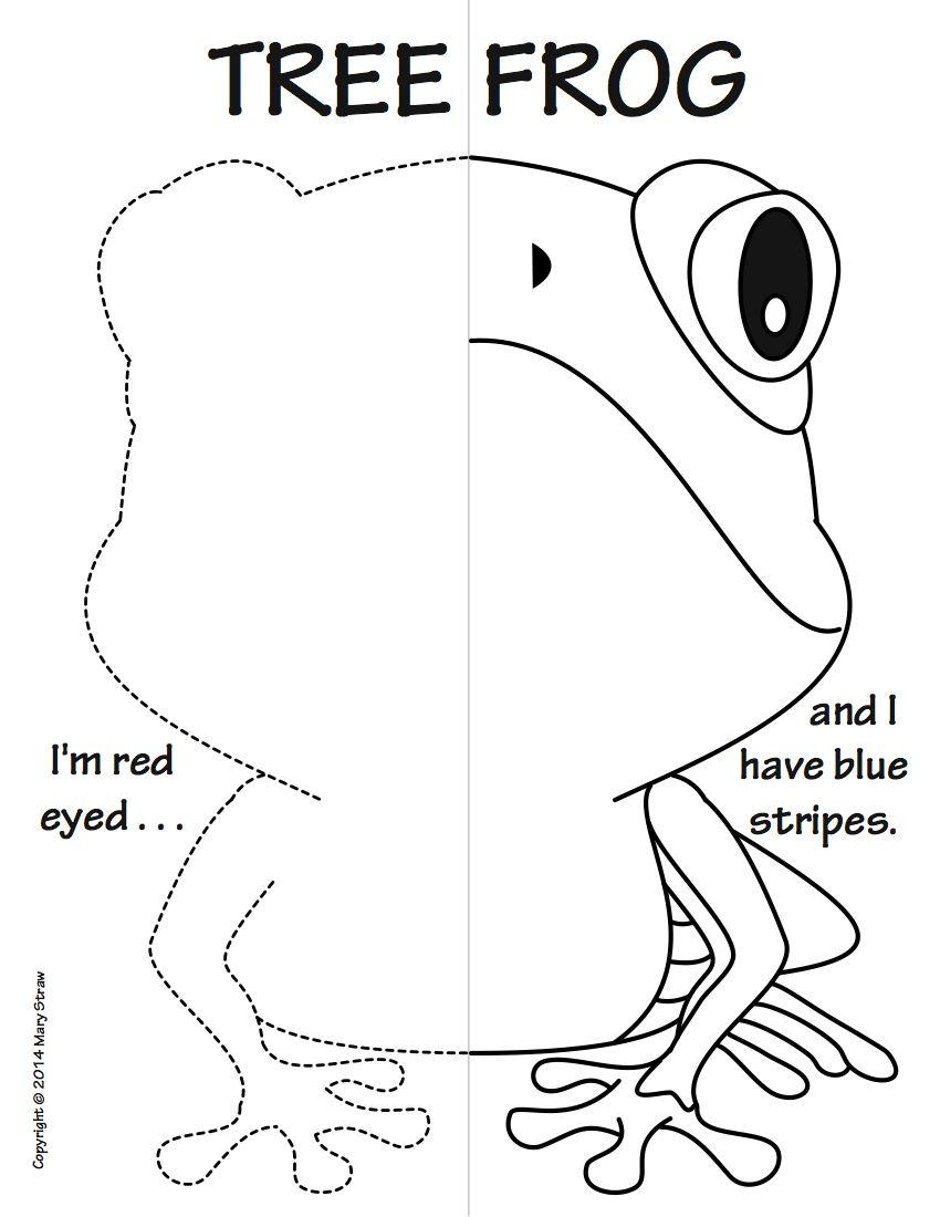 Reptiles and Amphibians Symmetry Activity Coloring Pages | Language ...