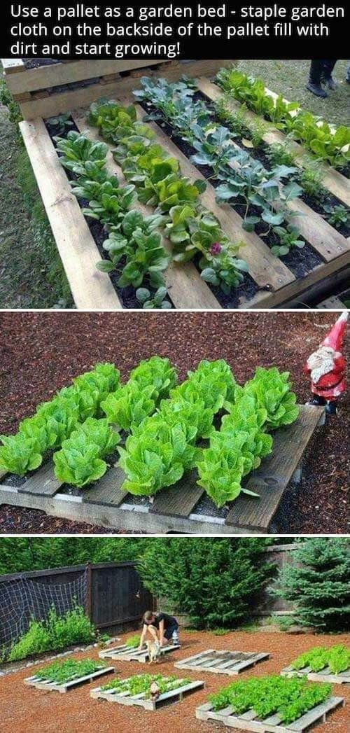46+ Simple Raised Vegetable Garden Bed Ideas 2019 - FarmFoodFamily, #Bed #FarmFoodFamily #ga...