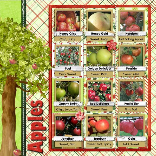 apple digital scrapbook layouts Yahoo Image Search