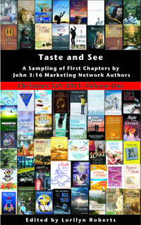 chapters from novels and non fiction from the members of John 316 marketing! free