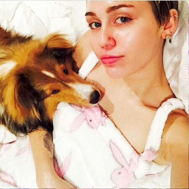 Miley Cyrus Miley Celebrities Miley Cyrus