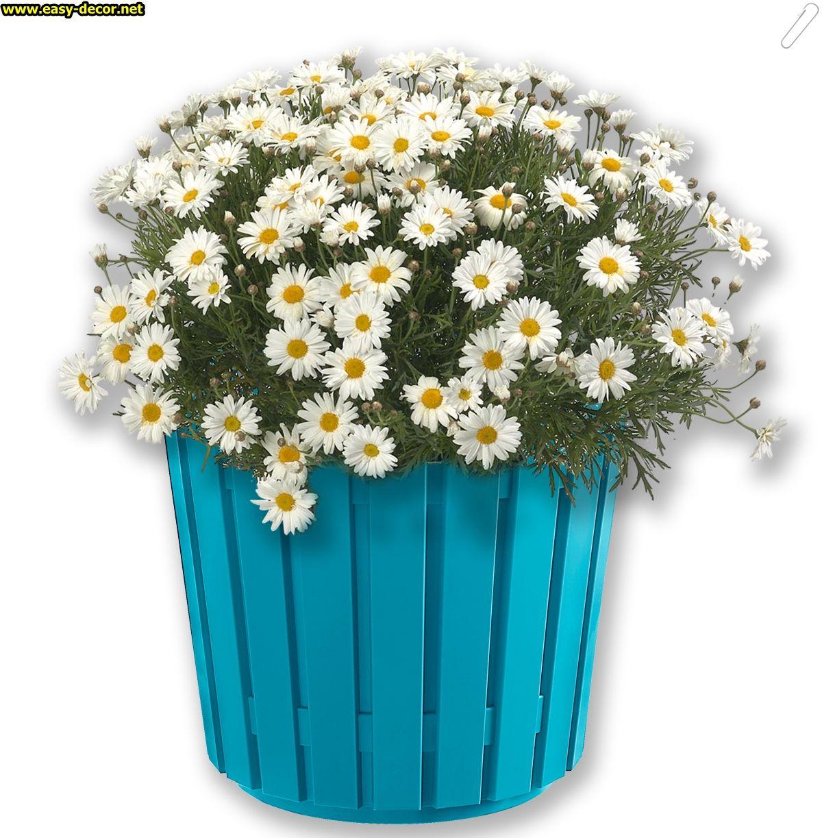Flowerpot-Models-1