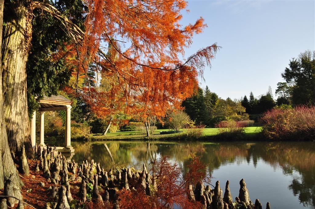 1-Arboretum--Balaine-Villeneuve-sur-Allier-Photo-1460.jpg (1024×680)