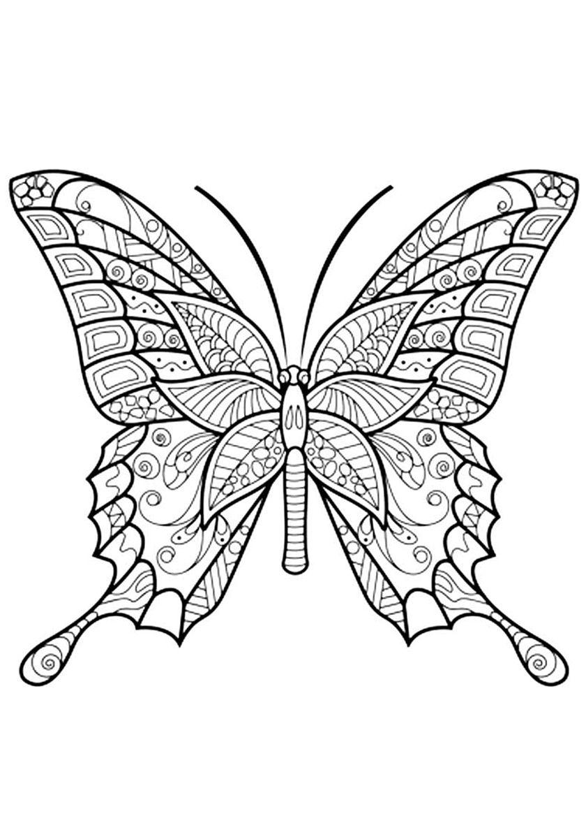 Антистресс бабочка - высококачественная раскраска из ...