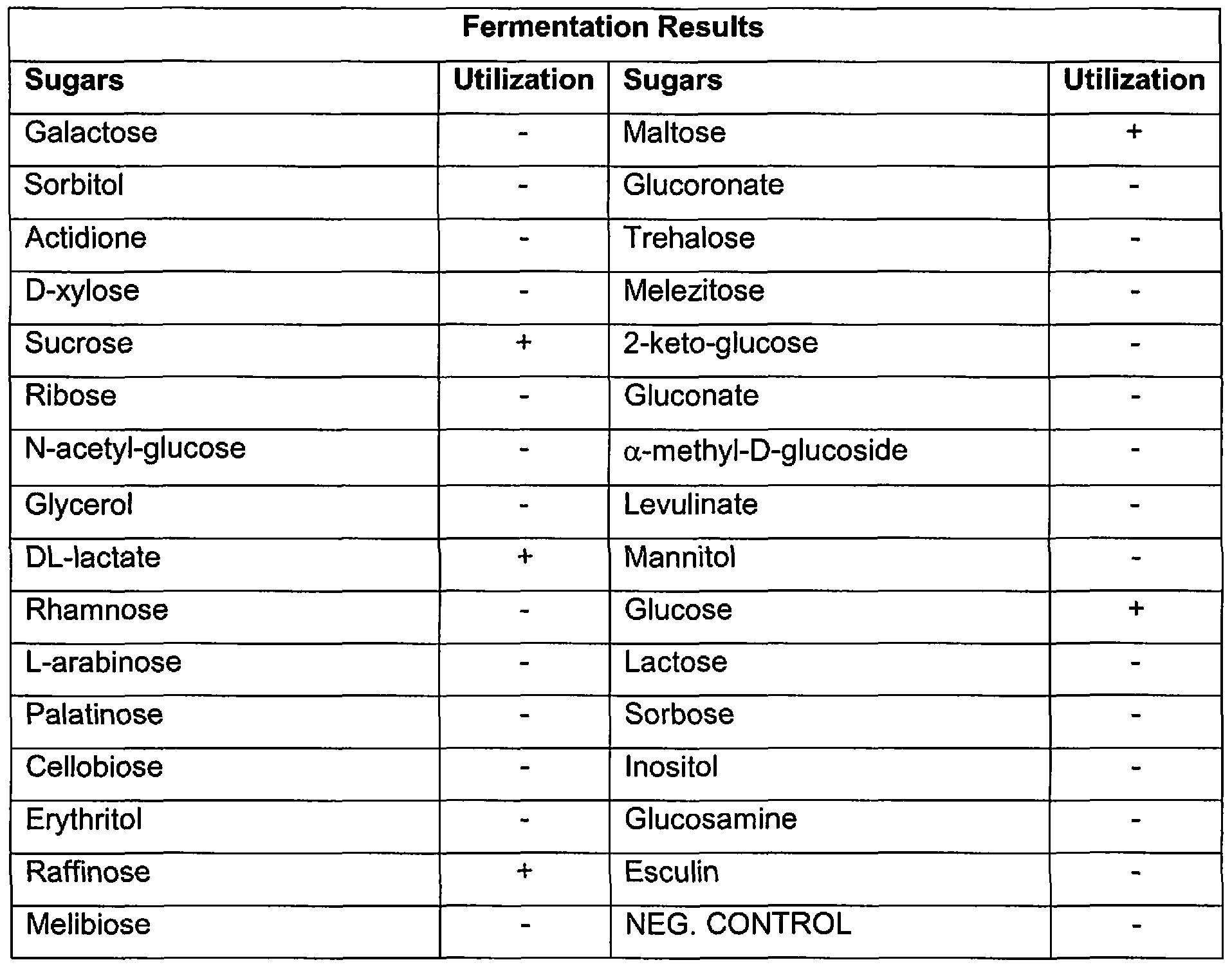 Examples Of Carbohydrates Macromolecules Pinterest