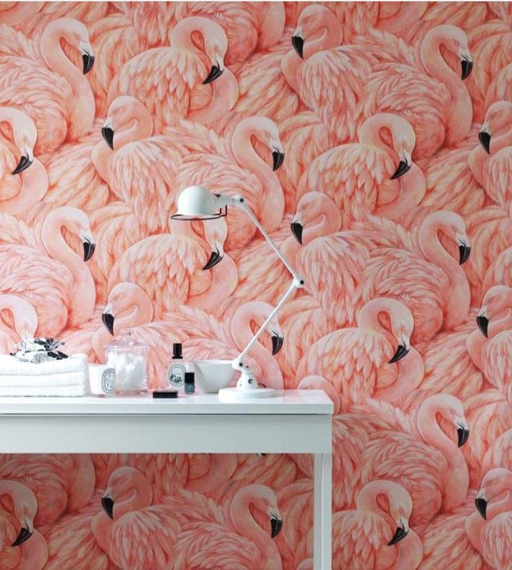 Flamingo wallpaper! Yes! | Interior Design Inspiration | Pinterest ...