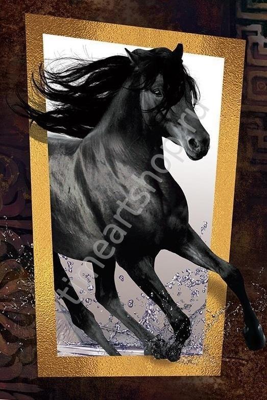 Чёрный конь, картина раскраска по номерам. размер 40*50см ...