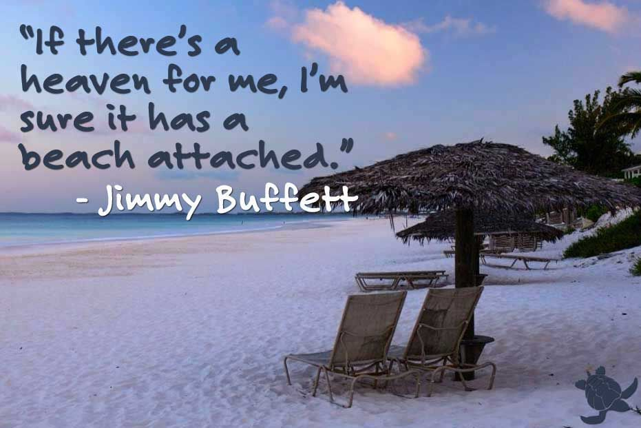 The King Of Tickets Jimmy buffet quotes, Veggie burger