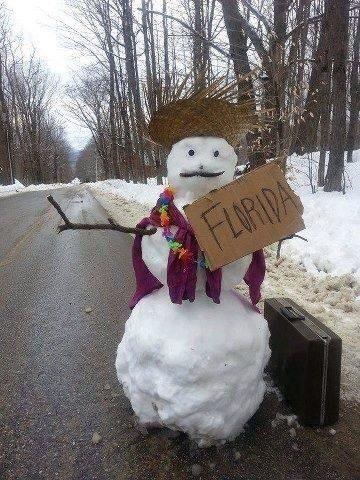 Florida Arte De Nieve Imagenes Raras Esculturas De Hielo