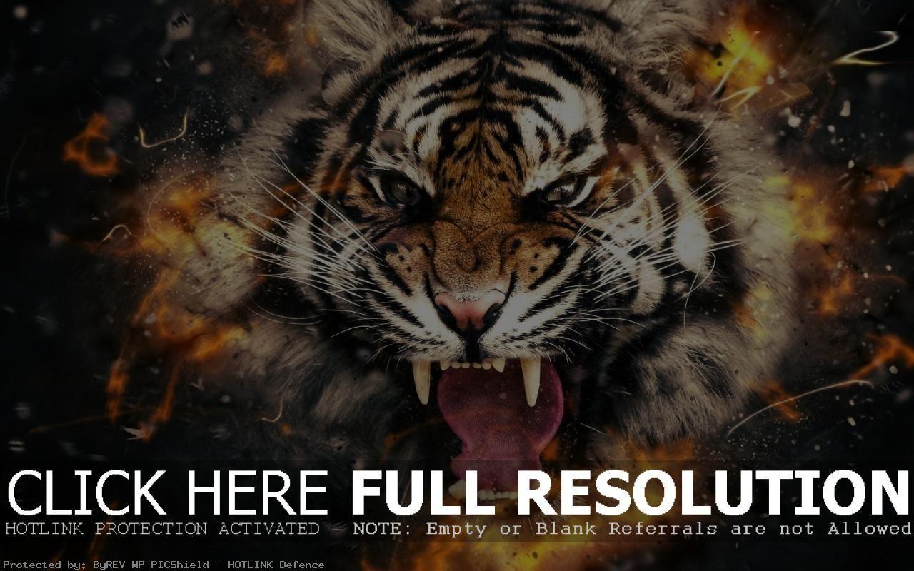 Tiger Big Mouth Wallpaper 1280x800 Tigers Wallpapers 1280x800 44 Wallpapers Adorable Wallpapers