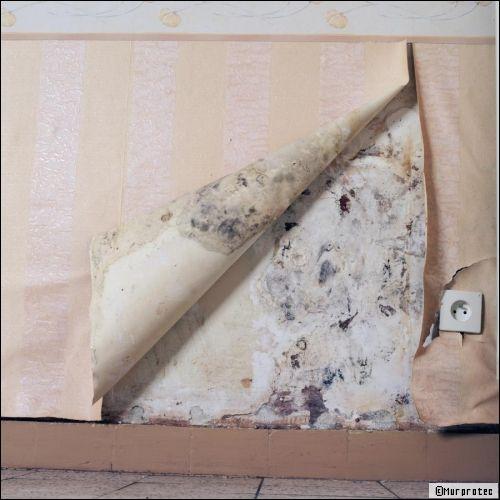 Résoudre les problèmes de salpêtre et du0027humidité avec un traitement - Raccord Peinture Mur Plafond