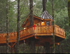 Cave Junction Tree House Resort Includes Hotels Motels Bed Guide What Kid A Treesort