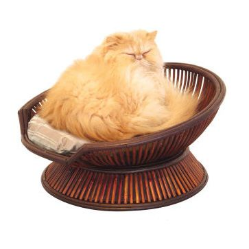 Atmosphere Cat Bed From Merry Products   Moderncat :: Cat Products .