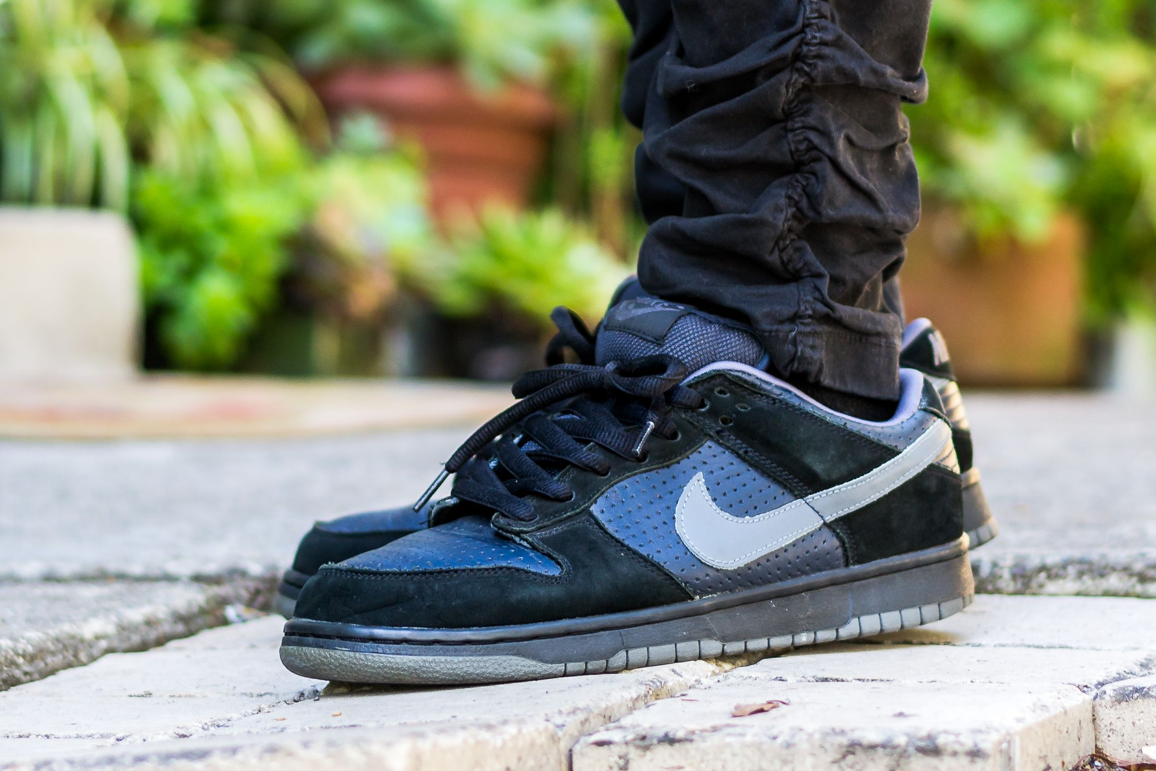 check out 24444 62342 Click to see my video review of the Nike Dunk Low SB Gino and find out  where to buy a pair yourself