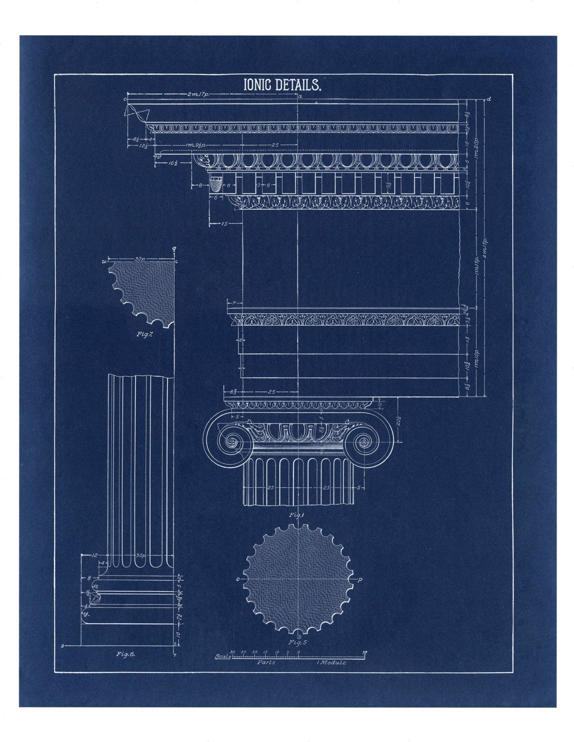 Blueprint home decor ionic column drawing blueprint fine art blueprint home decor ionic column drawing blueprint fine art print architecture blueprint print wall poster art blueprint art art malvernweather Gallery