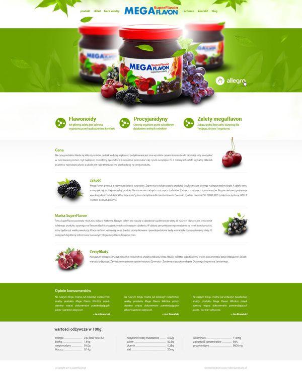 Chris Stanczyk Web Design Design
