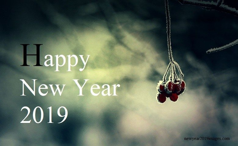 New Year 2019 Images New Year 2019 Images In 2019 Pinterest