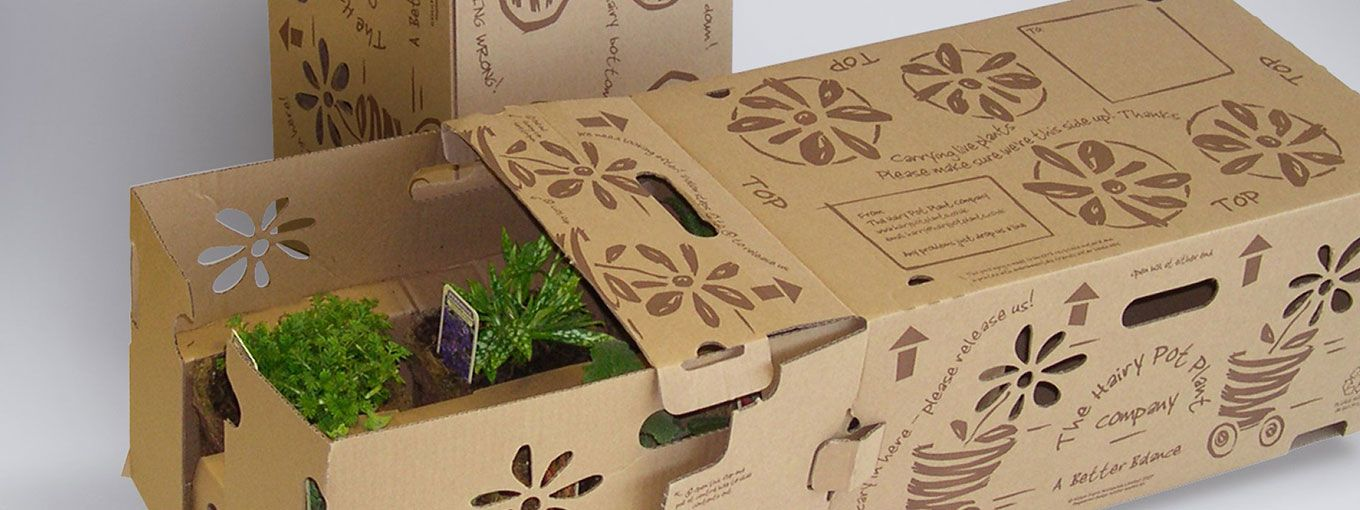 Bespoke Branded Mail Order Live Plant Boxes Packaging Plant Box Packaging Live Plants