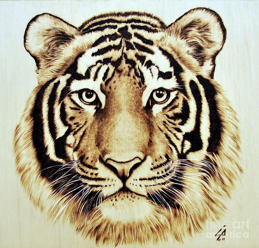 Tiger Wood burning art, Pyrography, Wood burning stencils