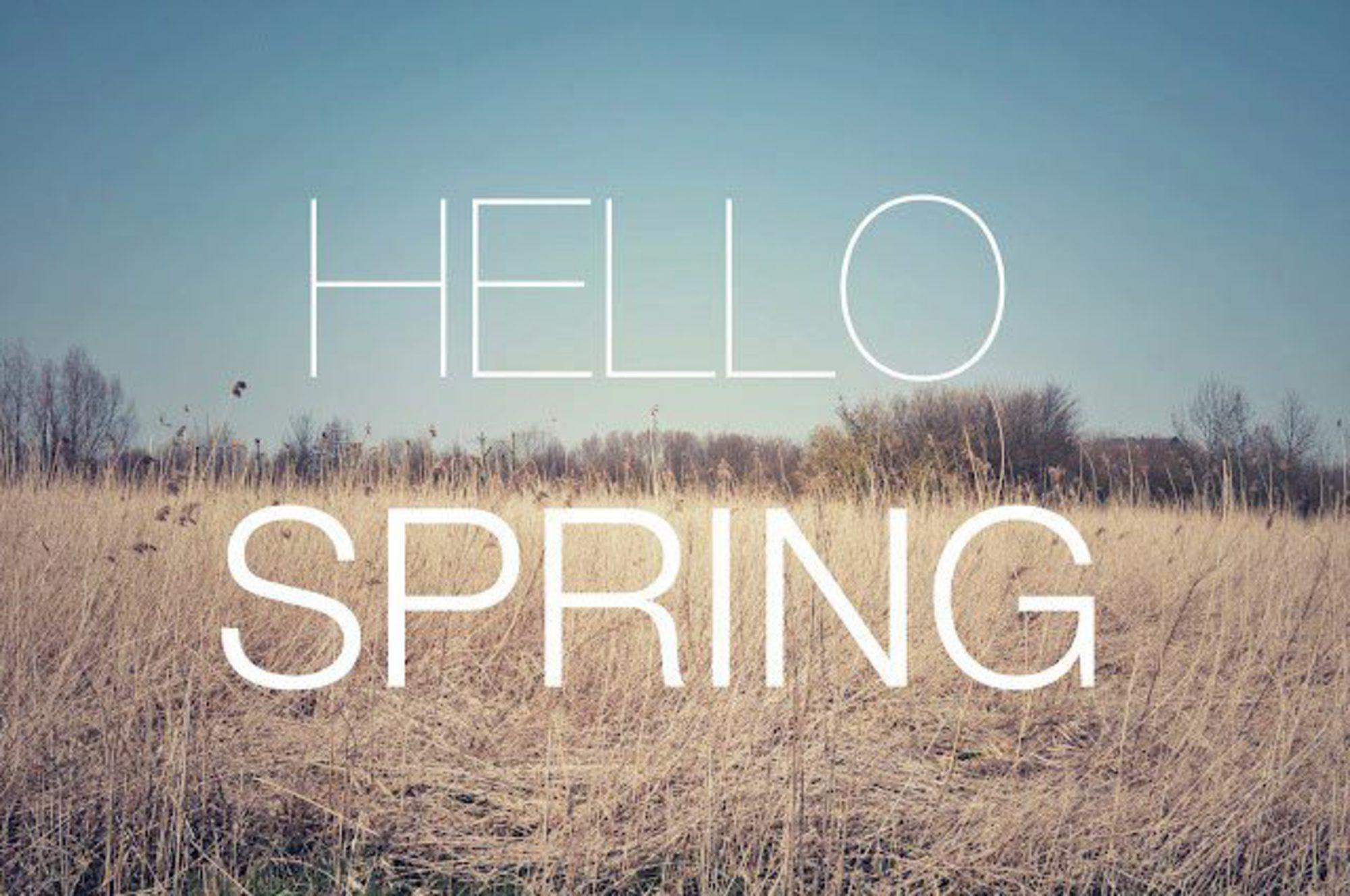 Tumblr Hello Spring Background 6