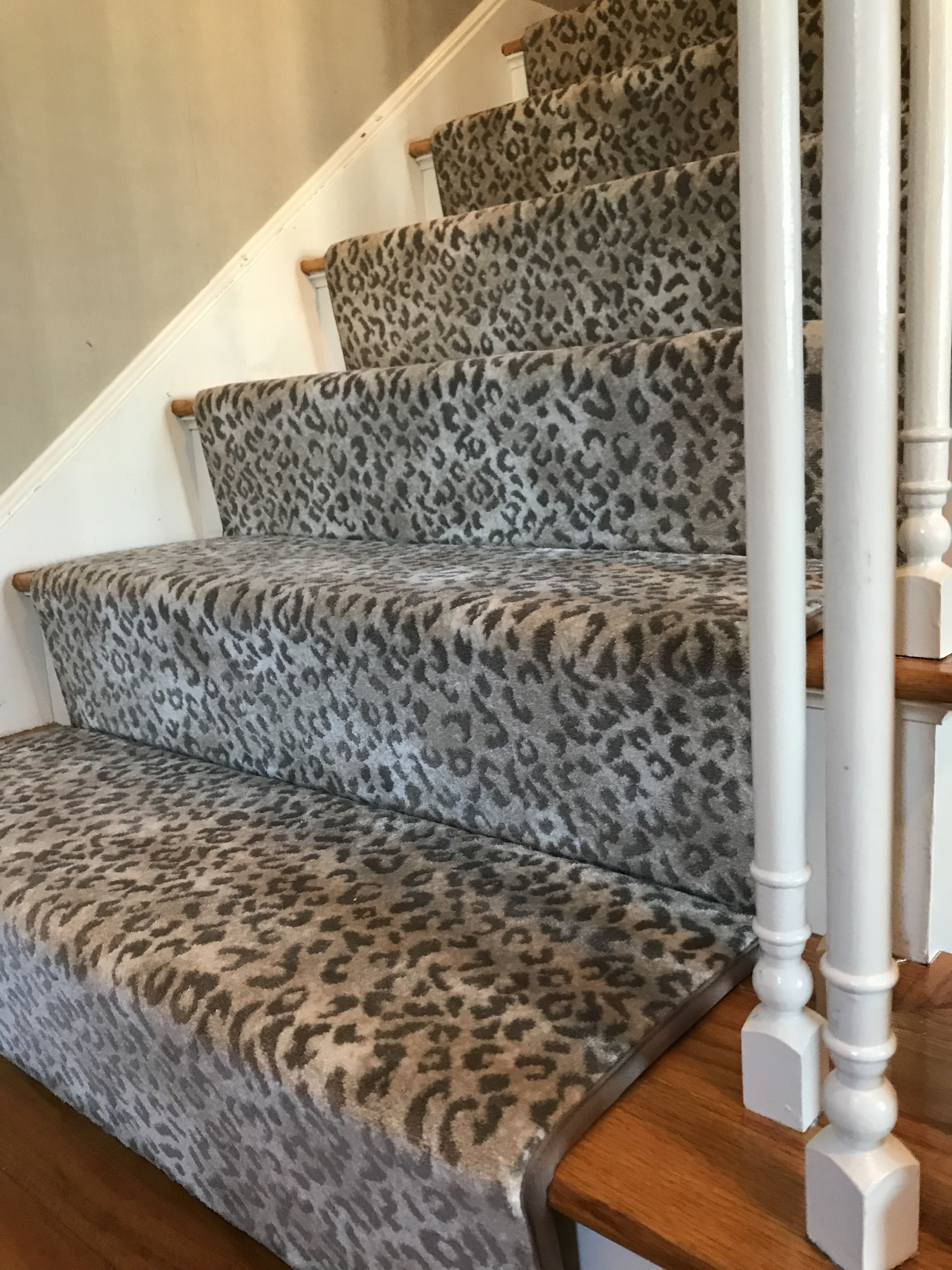 Pin By The Carpet Workroom On Animal Print Stair Runners Carpet   Cheap Carpet Runners For Stairs   Wooden Stairs   Stair Railing   Hallway Carpet   Staircase Remodel   Painted Stairs