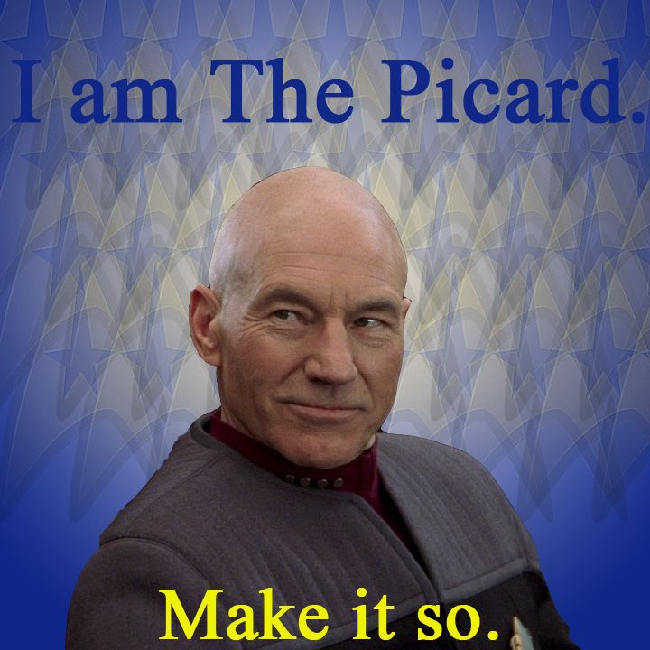 The Picard Captain Picard Star Trek The Next Generation With