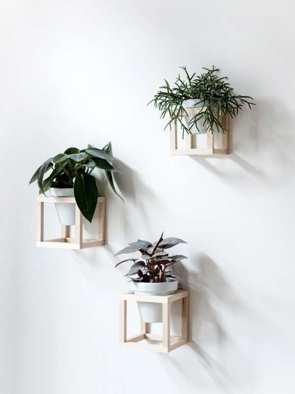 awesome indoor plants decor ideas for your home and apartment page of balcony diy hanging planter also rh pinterest
