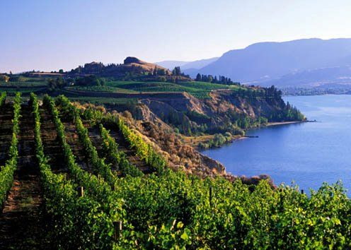 Victoria B.C.   http://www.wine-searcher.com/regions-okanagan+valley