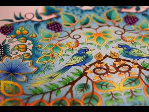 Johanna Basford Enchanted Forest How To Color Birds Paradise Youtube Enchanted Forest Coloring Book Enchanted Forest Coloring Basford Enchanted Forest