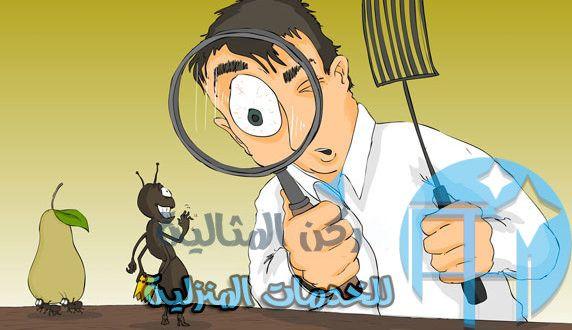 شركة المثالية لمكافحة الحشرات بالاحساء 0558978918 تقدم الشركة افضل العروض Cleaning Service Character