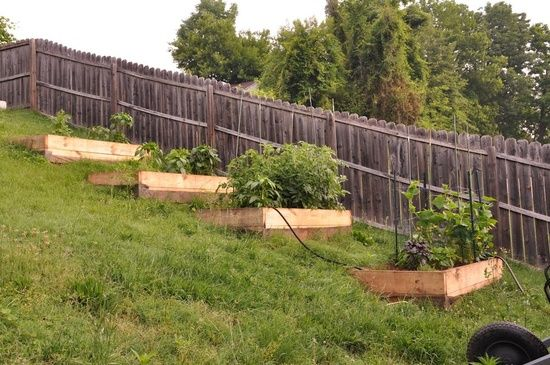 raised garden beds on a hill. Some of the space closest to the school is inclined so this might be what we have to do. -   22 garden beds on a hill ideas