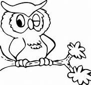 owl winking owl coloring pagescoloring - Baby Owl Coloring Pages