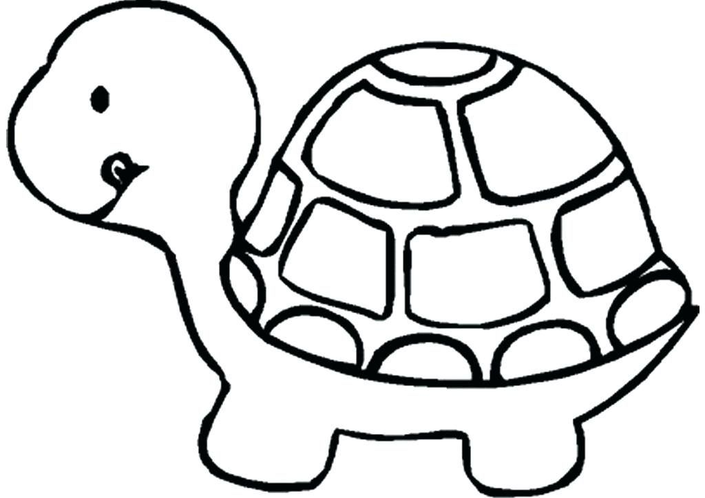 Pets Coloring Pages Best Coloring Pages For Kids Turtle Coloring Pages Animal Coloring Pages Turtle Images