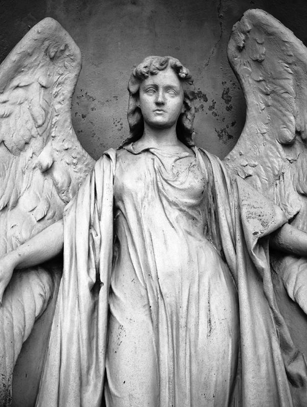 stone angel The stone angels (also known as stone cherubs) are ghostly beings met in central park's cult cemeterya very fast way of getting rid of them is staying near the gate and dodging their attacks, which will destroy the angels without the rookie doing much.