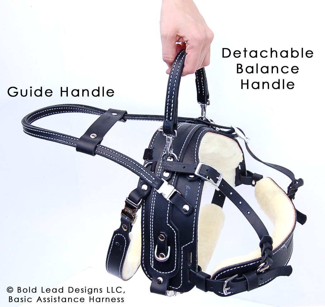 Balance Assistance Harness™ for service dogs Bold Lead