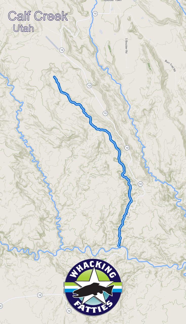 Calf Creek Fishing Report | Fishing report, Fly fishing ...