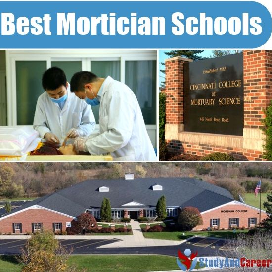 Best Mortician Schools In The Us  Study  Career