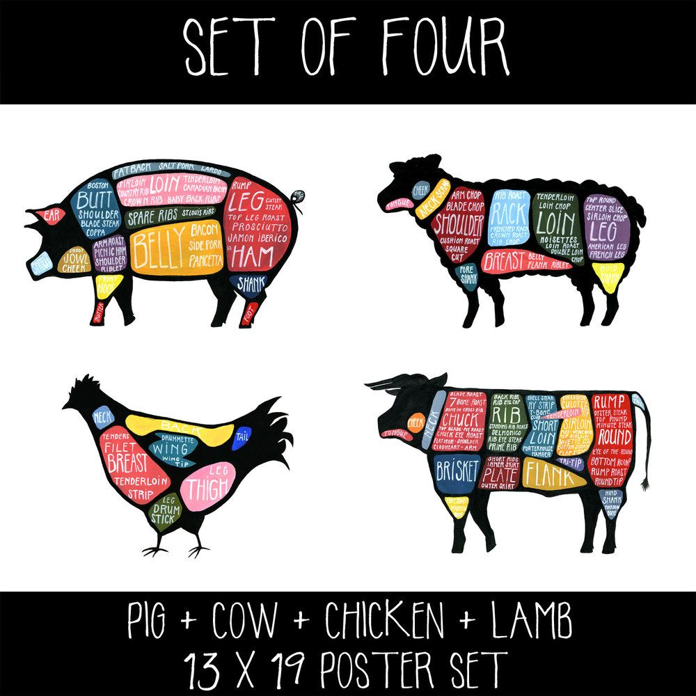 Set Of Four Cow Pig Chicken And Lamb Butchery Diagram Prints Cuts Beef Drywell Art