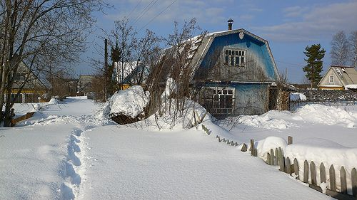 my garden in winter by E.Kopyszew, via Flickr