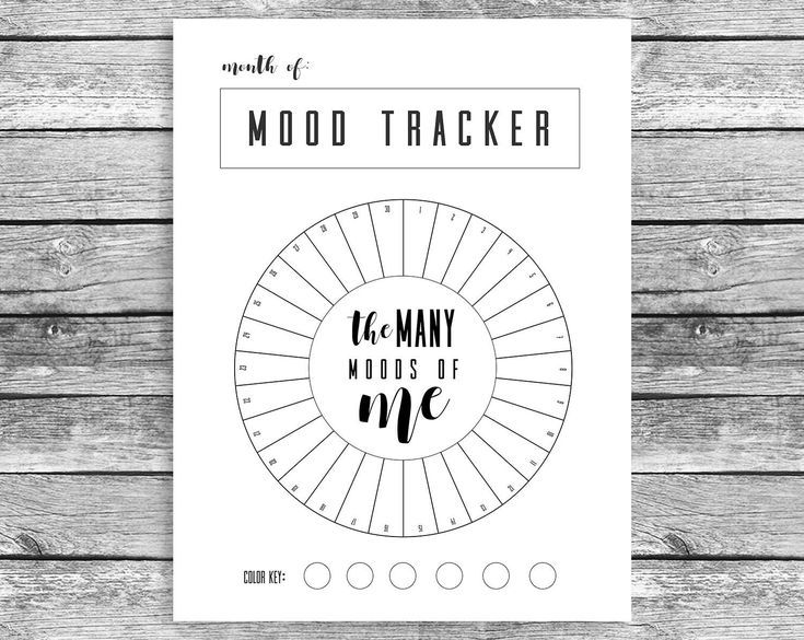Monthly Mood Tracker Circle, Bullet Journal, A5 Journal, Mood Chart